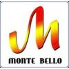 Входные двери MONTE BELLO